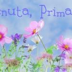 (Italiano) 6 + 1  Primavera a Varazze
